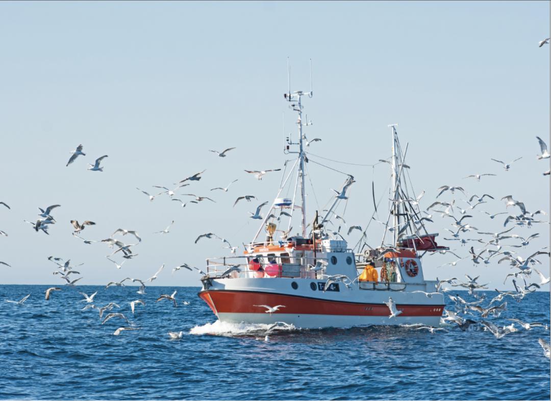 Skaper norsk fiskeripolitikk gode kystsamfunn? Torbjørn Trondsen - Samfunn og økonomi 1/2021